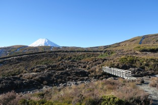 ...Devant nous le Mt Ngauruhoe