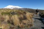 Derrière nous le Mt Ruapehu...