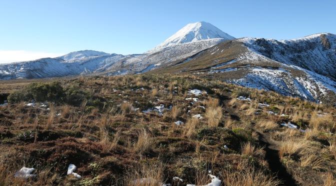 Nos plus belles randonnées en Nouvelle-Zélande